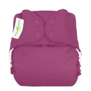 bumgenius elemental all-in-one cloth diaper