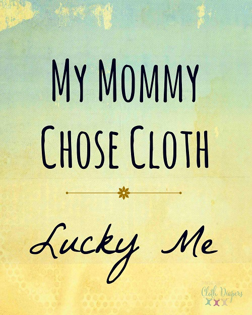 free cloth diaper printable - my mommy chose cloth diapers lucky me